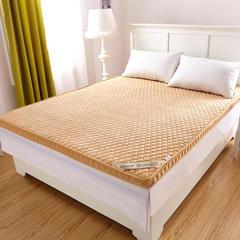 2018新款-珊瑚绒立体床垫 0.6*1.2米 驼色