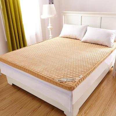 2019新款-珊瑚绒立体床垫 0.6*1.2米 驼色