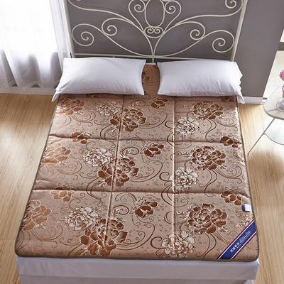 2019新款-冰丝凉席床垫 0.6*1.2米 驼