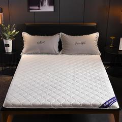2018新款-水洗棉抗菌防水床垫 0.9*2.0 贵族白