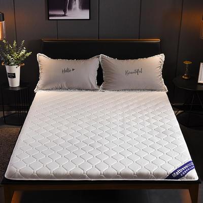 2019新款-水洗棉抗菌防水床垫 0.9*2.0 贵族白