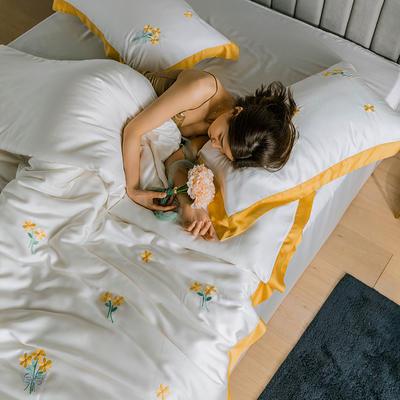 2020新品60支天丝北欧风晴系列 1.5m(5英尺)床 晴-贝拉吉