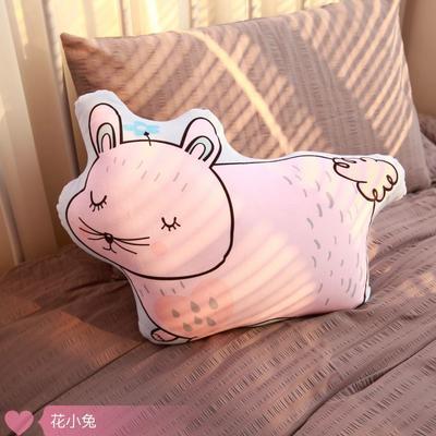 2020新款卡通抱枕 异形抱枕 花小兔