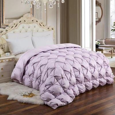 2021新款进口加密加厚柔赛丝羽绒被被子被芯 200X230cm(8斤) 紫色