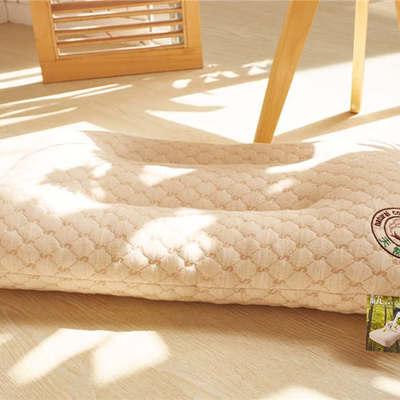 圣艺莱2018年枕芯 乳胶枕-彩棉护颈枕 48*74