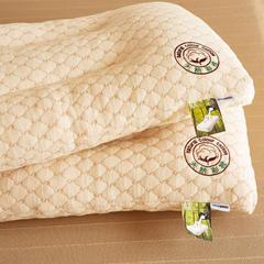 圣艺莱 彩棉乳胶枕 48*74cm/只