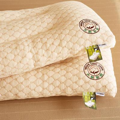 彩棉乳胶枕 48*74cm/只