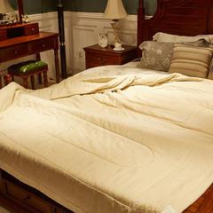 圣艺莱 天然彩棉棉花夏被 200X230cm 彩棉夏被