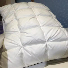 徐大大家纺枕芯系列面包羽绒枕实拍 面包羽绒枕一个