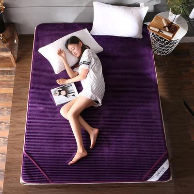 床垫 保暖床垫 法莱绒床垫子 90*200 cm 高贵紫
