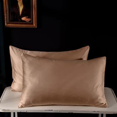 枕套 水洗真丝枕套 哑光仿水洗枕套 学生枕头套 恩和家纺 48cmX74cm 哑光-香槟