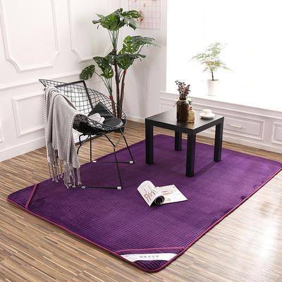 床垫 记忆棉床垫 地垫 脚垫恩和家纺 90*100(地垫) 高贵紫