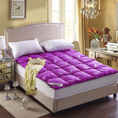 七彩羽绒床垫羽绒床垫 1.0m(3.3英尺)床 紫色