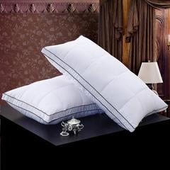 奢华羽绒枕 1