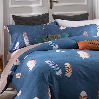 秋冬涂料磨毛系列 1.8m(6英尺)床 印第安风情