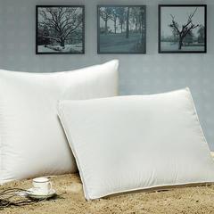 纯棉防羽布羽绒枕 白色48*74cm