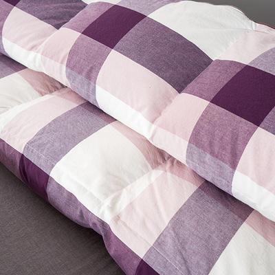 水洗棉紫格鹅绒被/羽绒被 200X230cm 95%朵朵绒