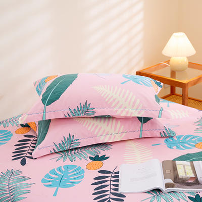 2020新款-全棉磨毛四件套单品单枕套 48*74cm/对 乐享生活-粉