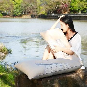 全棉天竺棉磁疗保健枕舒适枕安睡枕枕头枕芯
