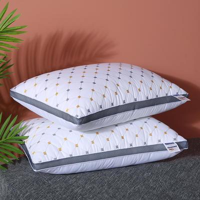 2020新款立体磨毛绗绣促销枕枕芯枕头 46*70cm 立体磨毛绗绣枕 /一只