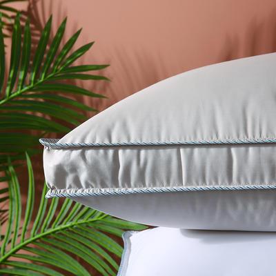 2020新款全棉高密暖心羽丝枕枕头枕芯48*74cm 灰色/一只