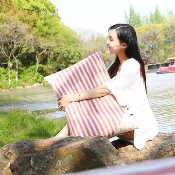 2021新款彩棉定型枕枕芯枕头48*74cm