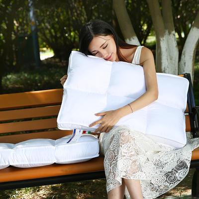 2021新款全棉魔方羽丝枕枕芯48*74cm 六方格