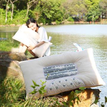 2021新款天竺棉磁疗决明子枕芯枕头43*70cm
