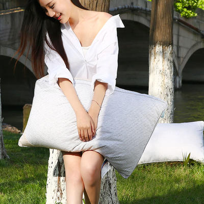 2021新款彩棉羽丝枕枕芯枕头48*74cm 灰条