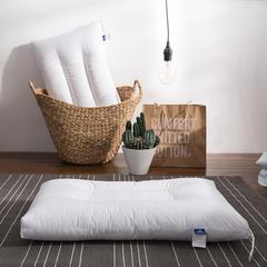 枕芯-羽丝绒水洗枕 羽丝绒水洗枕单只(48*74cm)
