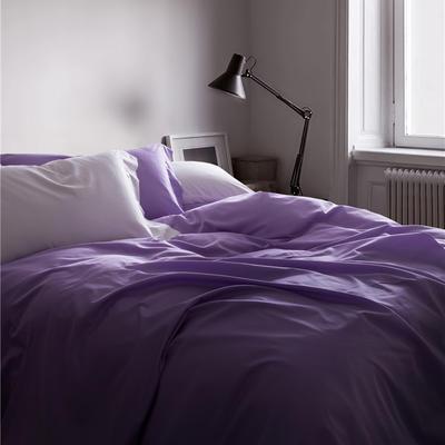 2019新款-TJ1507-60s纯色长绒棉四件套 床单款1.5m(5英尺)床 紫色