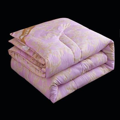 2020新款超柔磨毛冬被被子被芯-柏娜系列 1.5m款冬被4斤 柏娜紫