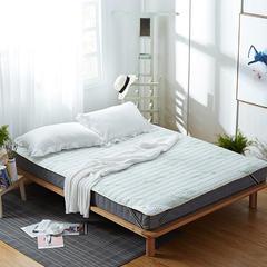 2017 新款竹纤维慢回弹床护垫 90*200cm 纯白