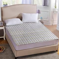 床垫床褥系列    磨毛加厚床垫 90x200cm 青春如歌