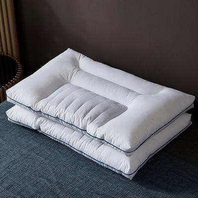 2021新款全棉分区决明子枕枕头枕芯48*74cm/只 白色