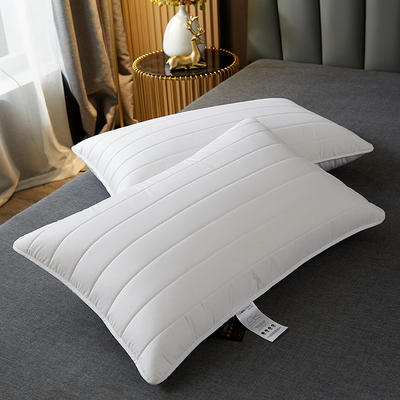 2021新款全棉乳胶片枕枕头枕芯48*74cm/只 白色