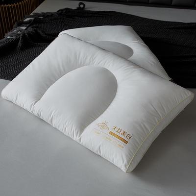 2021新款60s全棉大豆蛋白分区枕48*74cm 白色