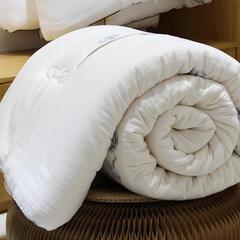 冬季加厚保暖双层纱棉花被天然被子被芯冬被 150x200cm 白色