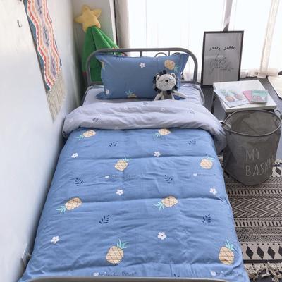2019新款全棉学生宿舍单人三件套 枕套48*74/个 菠萝物语