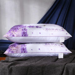 沃兰国际 磨毛印花荞麦薰衣草决明子保健护颈枕芯安睡枕头 薰衣草促销枕