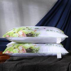沃兰国际 磨毛印花薰衣草茉莉花决明子保健护颈枕芯安睡枕头 决明子促销枕