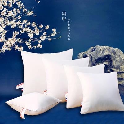 超柔磨毛靠垫抱枕方垫芯羽丝绒枕芯方枕头(多规格) 40*40