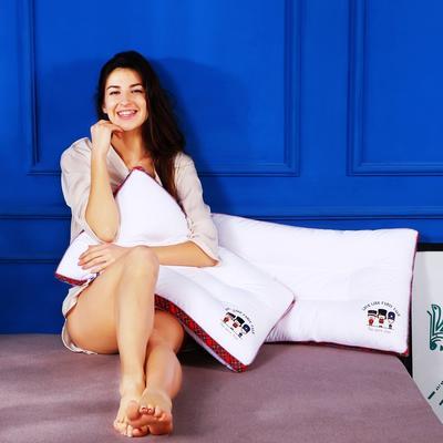 全棉加高烫画立体护颈枕芯五星级枕头定型保健枕 全棉立体定型枕(三个火枪手)红边