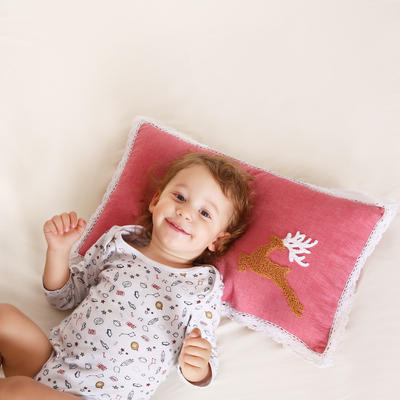 全棉卡通刺绣棉纱荞麦枕头全荞麦壳枕芯儿童枕 红色小鹿