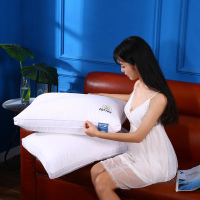 沃兰国际 全棉贡缎绗缝刺绣护颈立体枕芯安睡助眠枕头 全棉时代