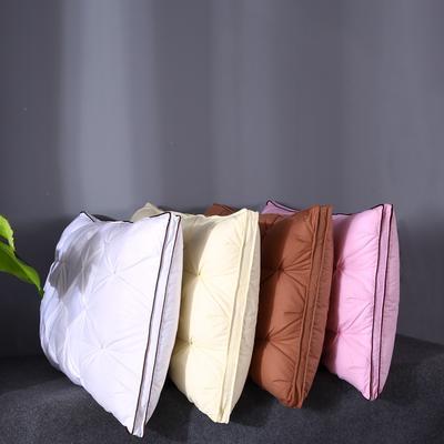 五星级酒店羽绒枕头95白鹅绒毛片家用成人护颈枕芯 高贵典雅白