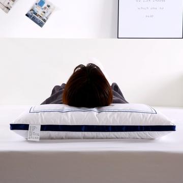 沃兰国际 全棉刺绣酒店枕头成人护颈椎枕家用学生单人羽丝绒枕芯
