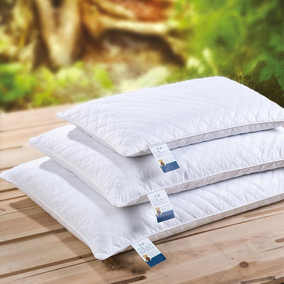 儿童优质全荞麦枕头厂家批发直销(送全棉枕套) 小号30*50(儿童款)