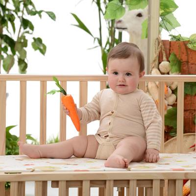 纯棉婴儿爬爬服彩棉前门襟爬衣 包屁衣免费招代理 59码 棕色