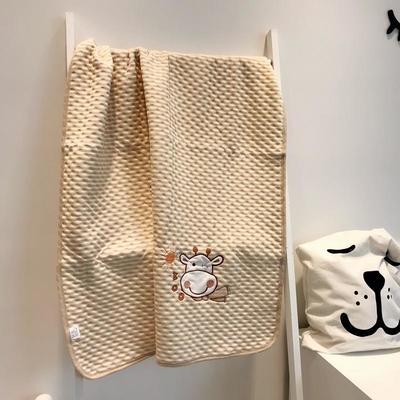 2019新款彩棉空气层盖毯 90x120cm 绣花款随机盖毯